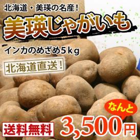 越冬インカのめざめ 約5kg(2S以上・M〜LM中心) 【送料無料】減農薬栽培 北海道より直送