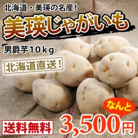 越冬男爵芋約10kg(M~2Lサイズ) 【送料無料】減農薬栽培 北海道より直送