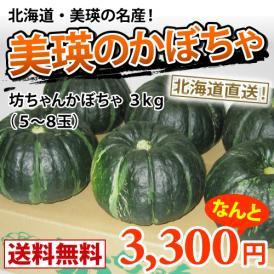 坊ちゃんかぼちゃ約3kg(約5~8玉) 減農薬栽培 【送料無料】北海道美瑛より直送