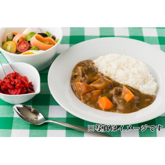 【6食セット】カシータ ビーフカレー 6食02