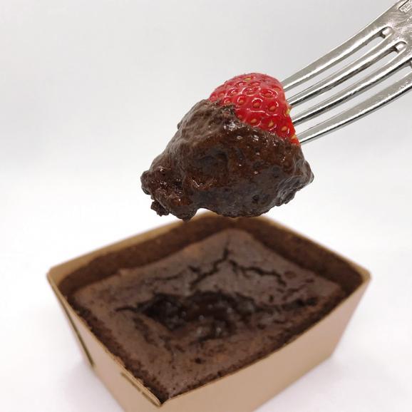 銀座カシータ ガトーショコラ (GINZA CASITA Gateau Chocolat) 2個入り03