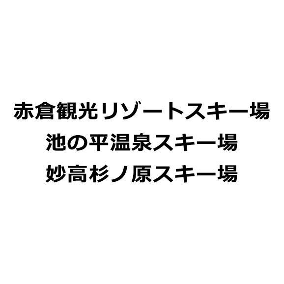Mt.Myoko 共通リフト1日券<全日┃大人>01