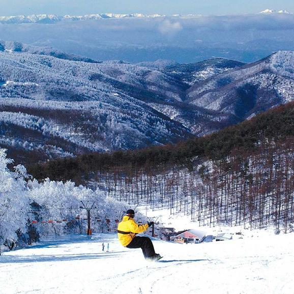 峰の原高原スキー場 オールレンタル付リフト券パック<全日┃大人>01