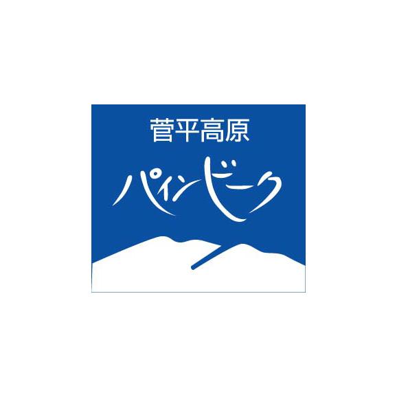 菅平パインビークスキー場 エントリーパスリフト1日券<全日┃大人>02