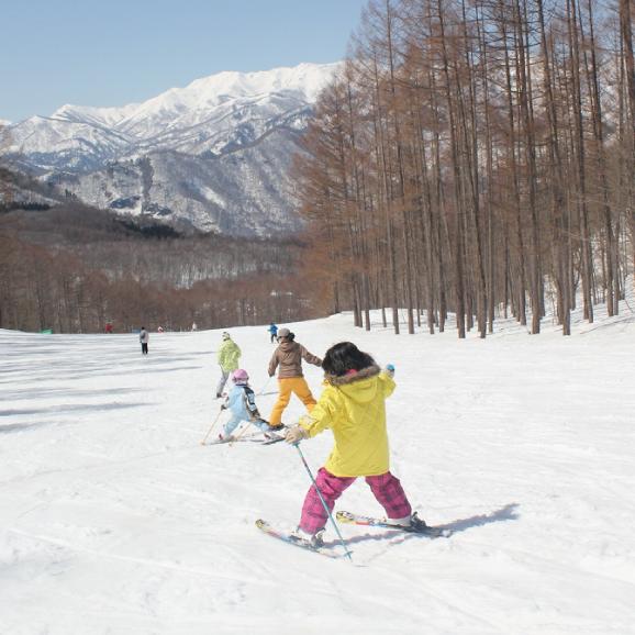 水上高原スキーリゾート 1日券<全日┃小学1~3年>01