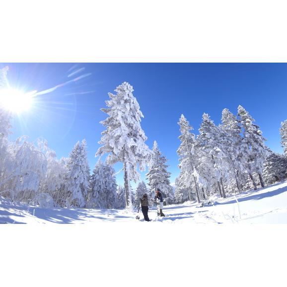 竜王スキーパーク 早割リフト1日券3枚綴り<全日|大人>01