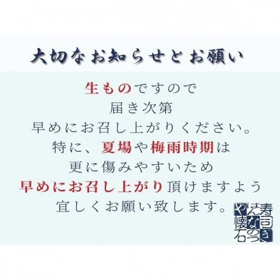 特製江戸前 さば棒寿司(布巾巻き)03