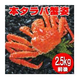 《急速冷凍》 浜茹で 本タラバ蟹 2.5kg前後×1尾入り 【送料無料】