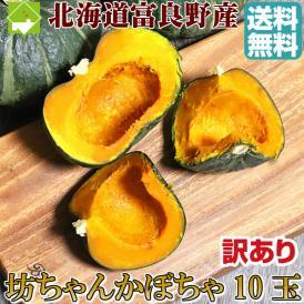 北海道富良野産 訳あり 坊ちゃんかぼちゃ 10玉 【送料無料】