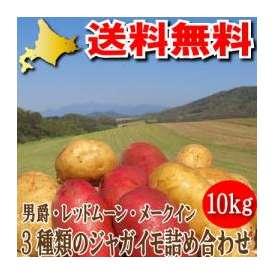 北海道富良野産 お試し3種類のじゃがいも(ジャガイモ) 10kgセット【メークイーン・男爵・レッドムーン】 【送料無料】