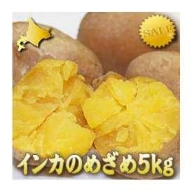 北海道産 新じゃがいも インカの目覚め(インカのめざめ) 5kg【送料無料】
