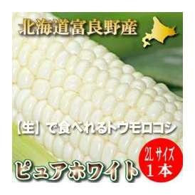 【幻の白いとうもろこし】北海道富良野産 ピュアホワイト1本