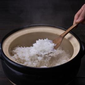 ゆめぴりか 【新米】北海道産 ゆめぴりか 10kg 送料無料