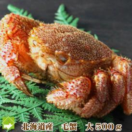 毛蟹 北海道産 500g前後 1尾 送料無料