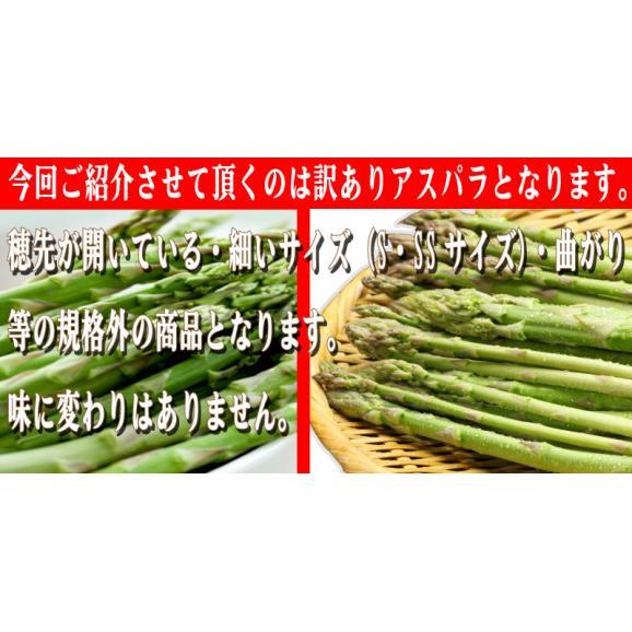 北海道ふらの産 訳ありグリーンアスパラ 800g【送料無料】03