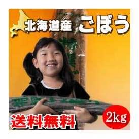 北海道産 土付き ごぼう 2kg (牛蒡)