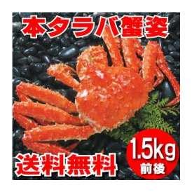 本タラバ蟹姿 1.5kg前後×1尾 《浜茹で急速冷凍》 【送料無料】