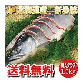 新春セール!北海道産 新巻鮭 秋さけ 特大 1.5kg【送料無料】 【箱入り】お歳暮・ギフトにも最適