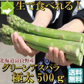 アスパラ 北海道富良野産 グリーンアスパラガス 極太 2Lサイズ 500g 【送料無料】