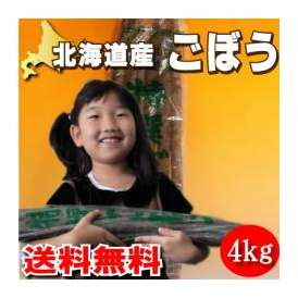 北海道産 土付き ごぼう 4kg (牛蒡) 【送料無料】