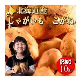 北海道産 ジャガイモ こがね 訳あり 10kg