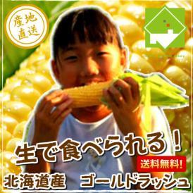 北海道ふらの産 【生】で食べれるトウモロコシ ゴールドラッシュ 10本 【日時指定不可】