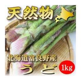 北海道富良野産 天然 うど 1kg 送料無料