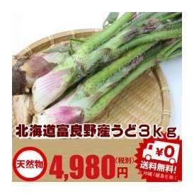 北海道富良野産 天然 うど 3kg 送料無料