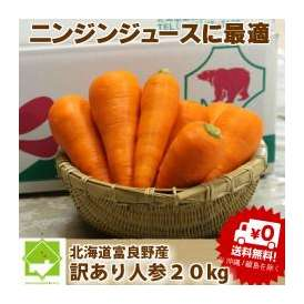 北海道富良野産 低農薬栽培 訳あり 洗い人参 20kg入り 【送料無料】【訳まち】【わけまち】【訳待ち】