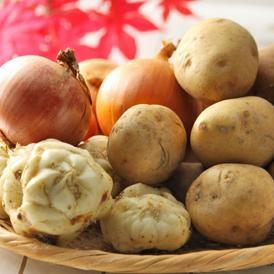 北海道富良野産 旬の野菜セット(基本内容:男爵・レッドムーン・たまねぎ・ゆり根) 合計5kg以上 送料無料!