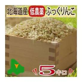 平成28年産 北海道産 冷めても美味しいお米  ふっくりんこ 【玄米 5kg】