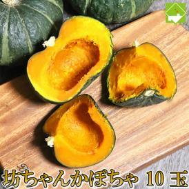 北海道富良野産 坊ちゃん(ぼっちゃん)かぼちゃ 10玉【送料無料】