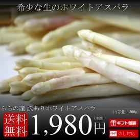 北海道産 訳ありホワイトアスパラ SからMサイズ 500g【送料無料】