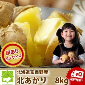 北海道富良野産 じゃが芋 訳あり 北あかり 3kg 【送料無料】