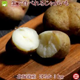 生で食べれる! じゃがいも 北海道産 はるか 3kg 送料無料