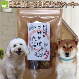完全無添加 北海道産 鮭とば ジャーキー 送料無料 メール便発送 日時指定不可