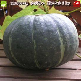 北海道富良野産 南瓜(かぼちゃ) 栗ゆたか 5kg(2から4玉入り)