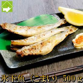 こまい 一夜干し 生干し 北海道産 500g 送料無料 氷下魚(こまい)