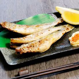 こまい 一夜干し 生干し 北海道産 1kg 送料無料 氷下魚(こまい)