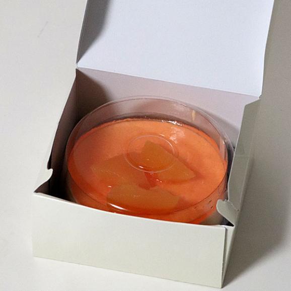 チーズケーキ 送料無料 富良野 レアチーズケーキ (メロン) ギフト配送可能 別途送料が発生する地域あり05