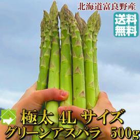 アスパラガス 北海道富良野産 グリーンアスパラ 超極太 4Lサイズ 500g 【送料無料】