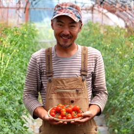 トマト 北海道 当麻産 川端さんの ミディトマト 2kg