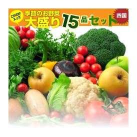 【会員限定】四国の田舎で取れた季節のお野菜、たっぷり15品盛りあわせ・詰め合わせ【送料無料・人気商品】
