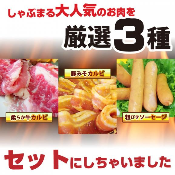 【送料無料】お試しバーベキュー!カルビセット★買えば買うほどオマケ付★02