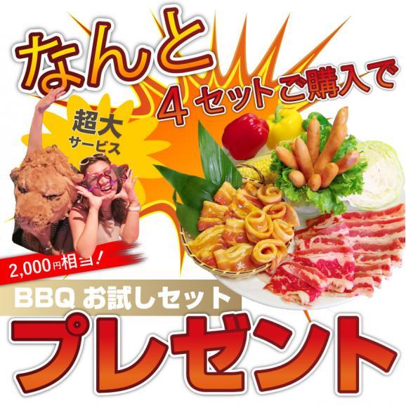 【送料無料】お肉屋さんの惣菜セット★厳選6種!!買えば買うほどオマケ付き!03