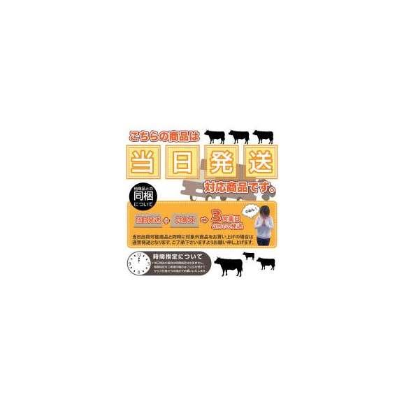【冷凍】大きい!骨付き粗びきソーセージ10本入り(450g)(12時までの御注文で当日発送、土日祝を除く)03