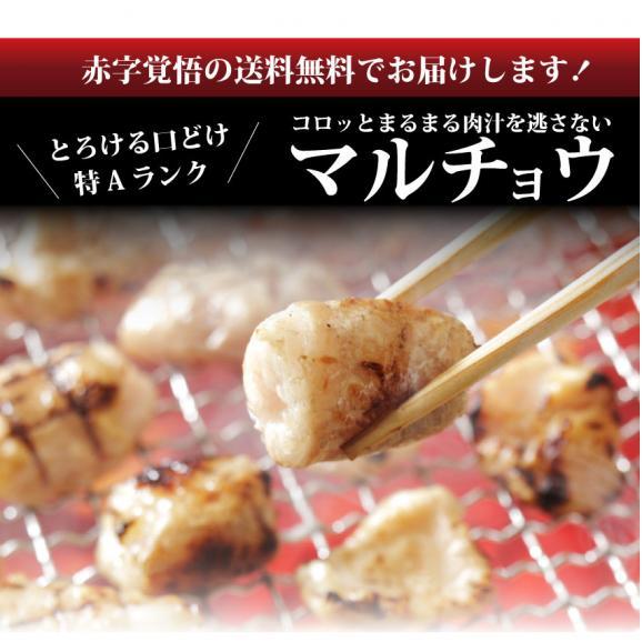 【送料無料】【冷凍】タレ漬けホルモン(マルチョウ) 200g 焼肉用 買えば買うほどオマケ付き! お試し02