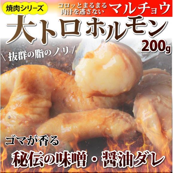 【冷凍】タレ漬けホルモン(マルチョウ) 200g 焼肉用 01