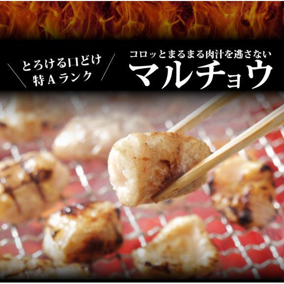 【冷凍】タレ漬けホルモン(マルチョウ) 200g 焼肉用 02