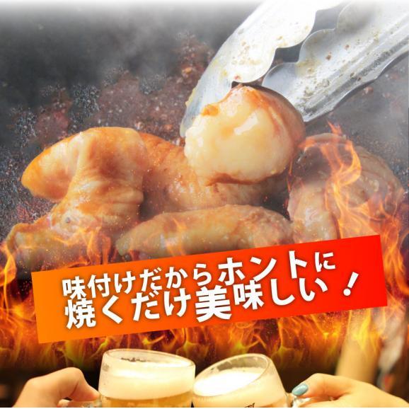 【冷凍】タレ漬けホルモン(マルチョウ) 200g 焼肉用 04